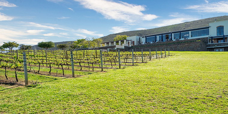 Domaine viticole France